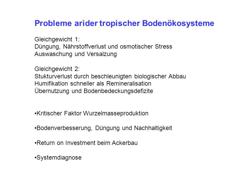Probleme arider tropischer Bodenökosysteme Gleichgewicht 1: Düngung, Nährstoffverlust und osmotischer Stress Auswaschung und Versalzung Gleichgewicht