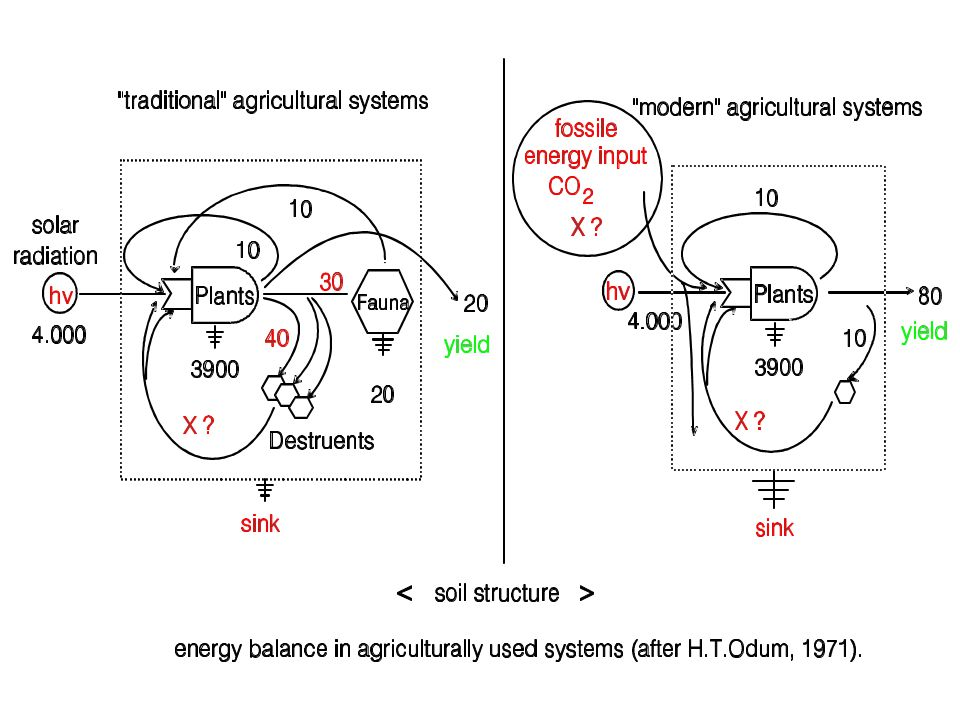basins of attraction system elasticity system stability present ecosystem future ecosystem Temperature Fertilizer Rhizodeposition ecosystem succession due to land use .