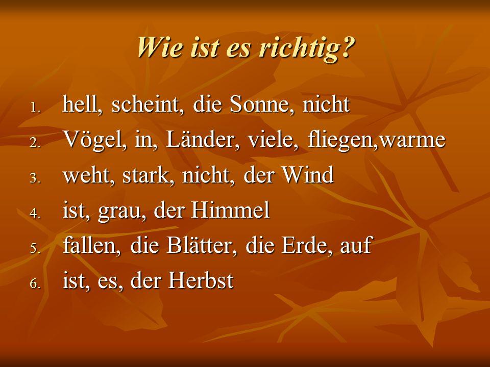 Wie ist es richtig? 1. hell, scheint, die Sonne, nicht 2. Vögel, in, Länder, viele, fliegen,warme 3. weht, stark, nicht, der Wind 4. ist, grau, der Hi