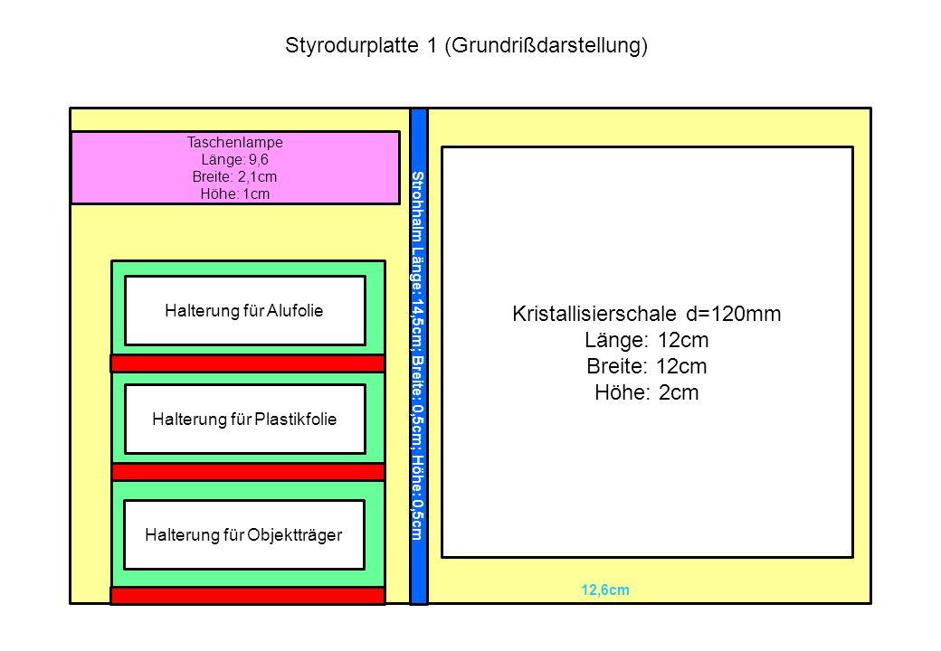 Kristallisierschale d=120mm Länge: 12cm Breite: 12cm Höhe: 2cm Taschenlampe Länge: 9,6 Breite: 2,1cm Höhe: 1cm Aussparung für Halterungen Strohhalm Lä
