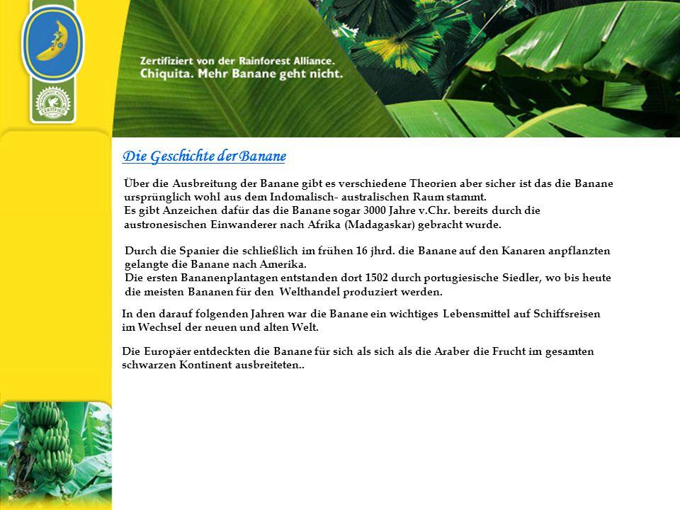 Die Geschichte der Banane Über die Ausbreitung der Banane gibt es verschiedene Theorien aber sicher ist das die Banane ursprünglich wohl aus dem Indomalisch- australischen Raum stammt.