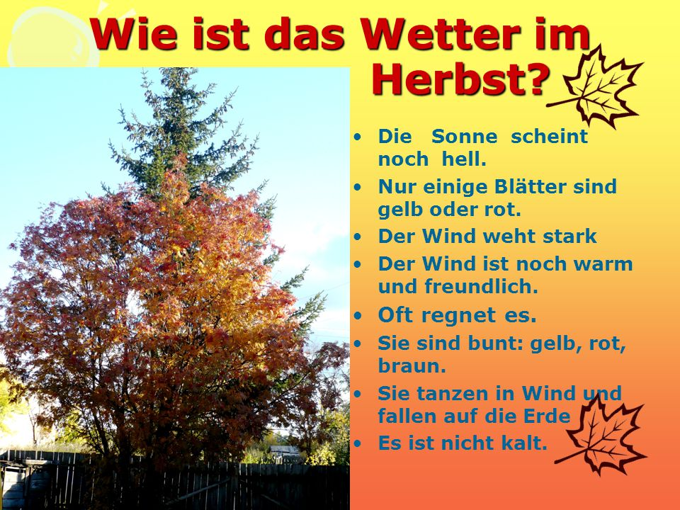 Wie ist das Wetter im Herbst? Die Sonne scheint noch hell. Nur einige Blätter sind gelb oder rot. Der Wind weht stark Der Wind ist noch warm und freun