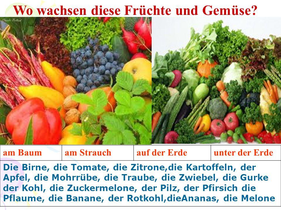 Wo wachsen diese Früchte und Gemüse? am Baumam Strauchauf der Erdeunter der Erde Die Birne, die Tomate, die Zitrone,die Kartoffeln, der Apfel, die Moh