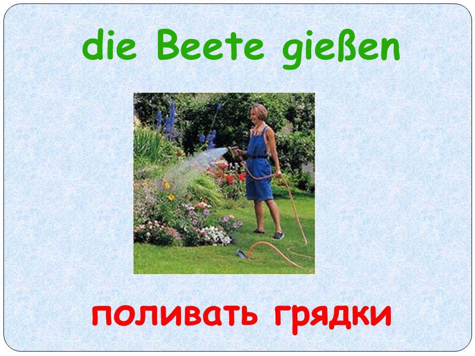 die Beete gießen поливать грядки