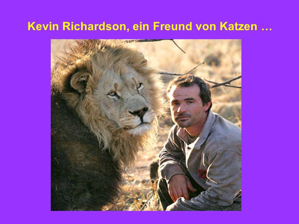 Kevin Richardson, ein Freund von Katzen …