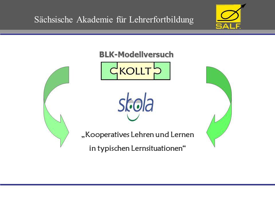 Eckdaten zum BLK-Programm SKOLA Programmträger:Universität St.