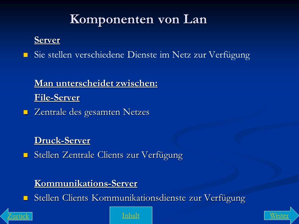 Peer- to- Peer- Netze und Client-Server-Netze Peer- to- Peer- Netze sind Netze, in denen man alle Rechner als Server und Client nutzen können. Peer- t