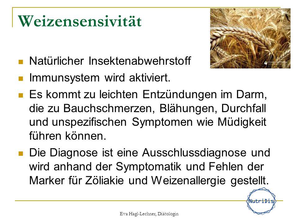Weizensensivität Natürlicher Insektenabwehrstoff Immunsystem wird aktiviert. Es kommt zu leichten Entzündungen im Darm, die zu Bauchschmerzen, Blähung
