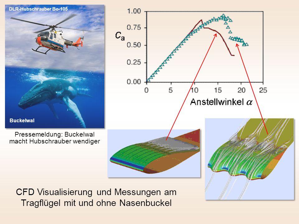 CFD Visualisierung und Messungen am Tragflügel mit und ohne Nasenbuckel DLR-Hubschrauber Bo-105 Pressemeldung: Buckelwal macht Hubschrauber wendiger Buckelwal 