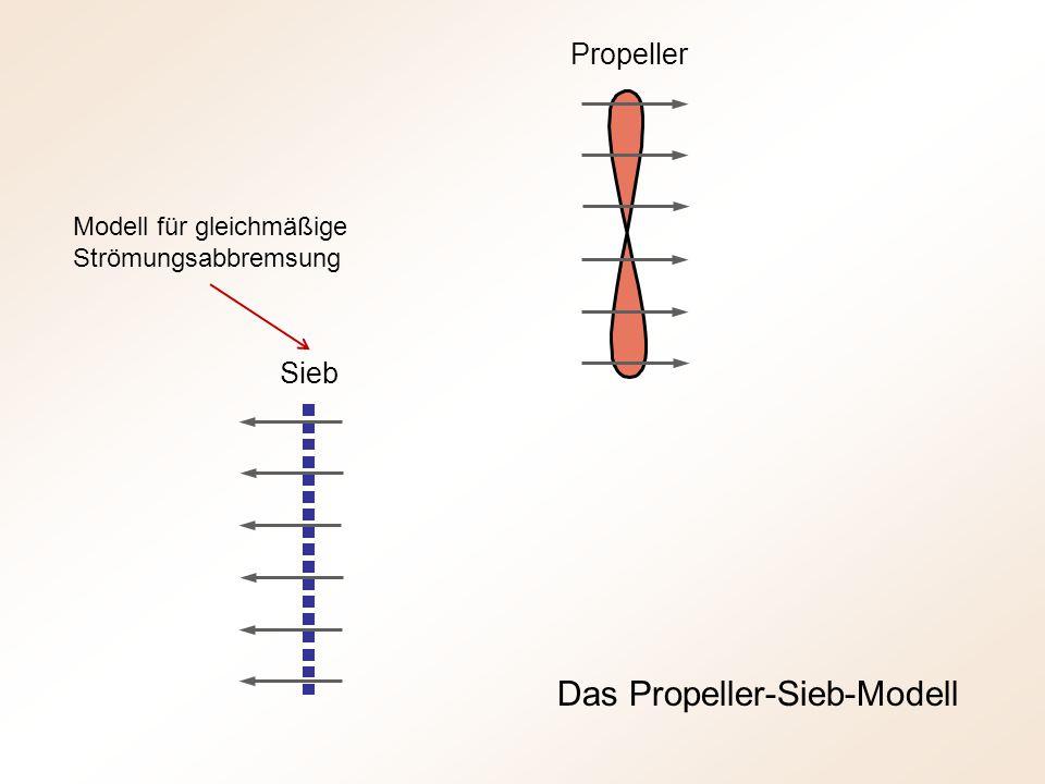 Das Propeller-Sieb-Modell Sieb Propeller Modell für gleichmäßige Strömungsabbremsung