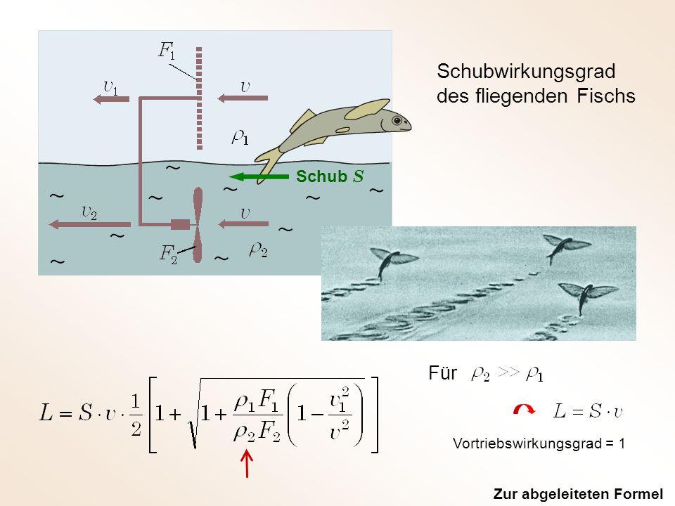 Schubwirkungsgrad des fliegenden Fischs Schub S Für Zur abgeleiteten Formel Vortriebswirkungsgrad = 1
