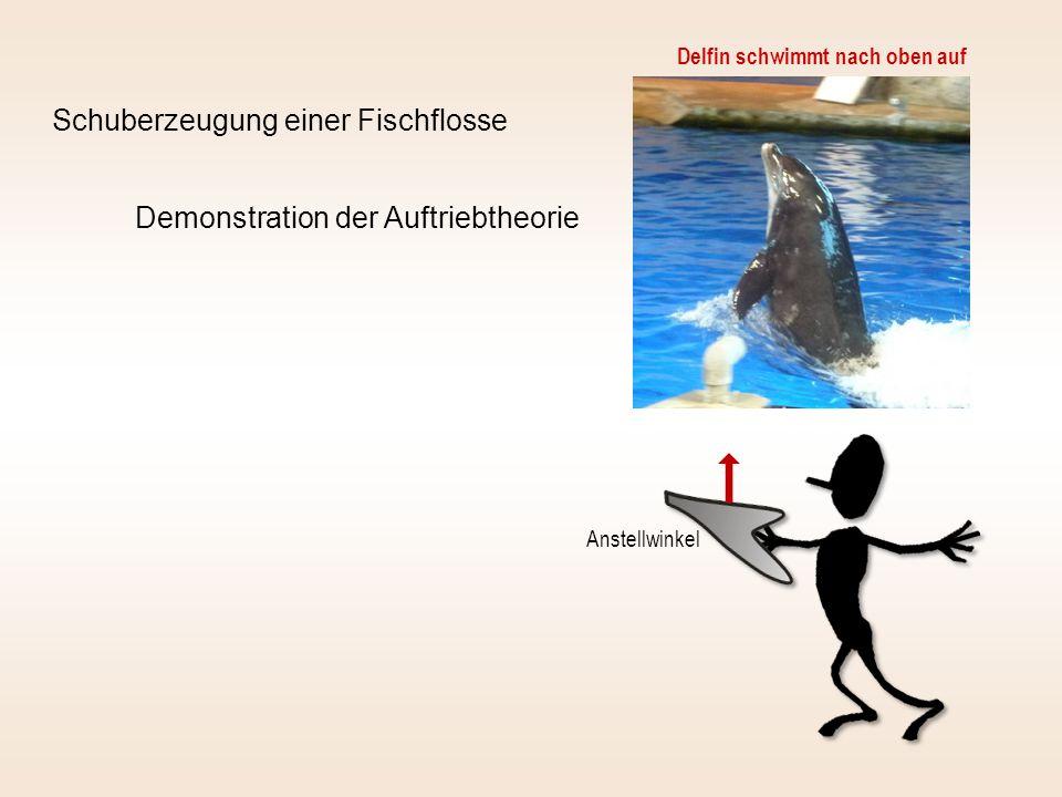 Schuberzeugung einer Fischflosse Demonstration der Auftriebtheorie Delfin schwimmt nach oben auf Anstellwinkel