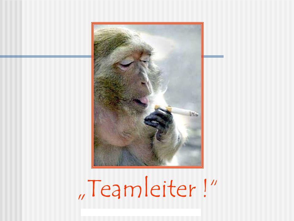"""Berchi - Minnesänger - """"Teamleiter !"""