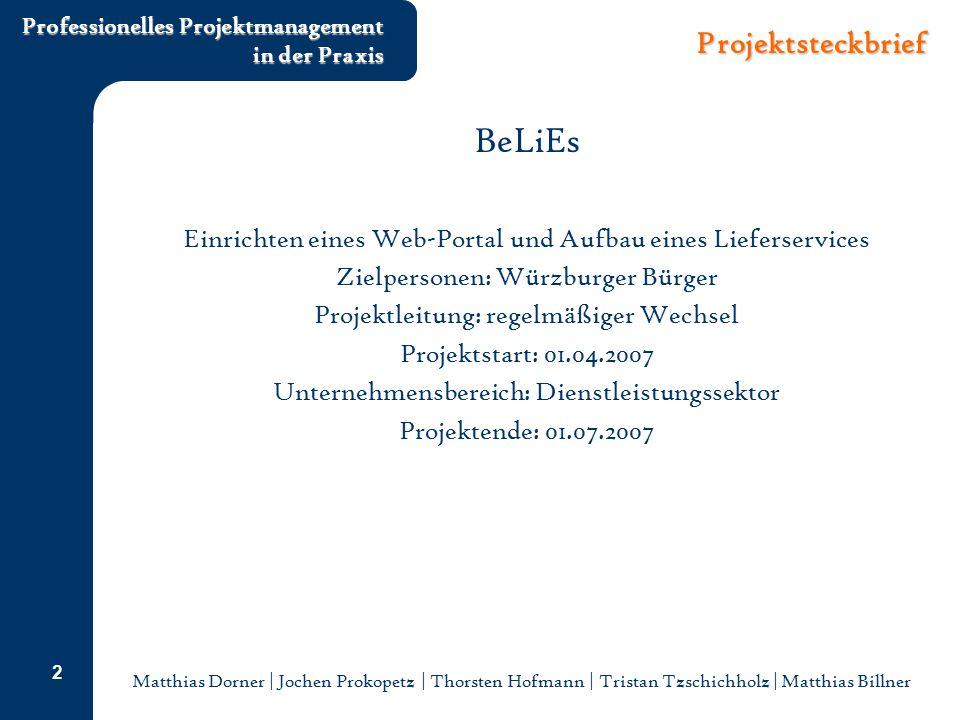 Matthias Dorner | Jochen Prokopetz | Thorsten Hofmann | Tristan Tzschichholz | Matthias Billner Professionelles Projektmanagement in der Praxis 2 Proj
