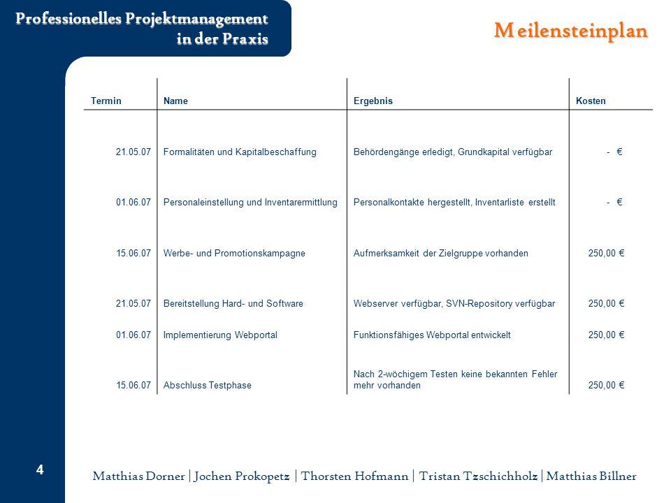 Matthias Dorner | Jochen Prokopetz | Thorsten Hofmann | Tristan Tzschichholz | Matthias Billner Professionelles Projektmanagement in der Praxis 4 Meil