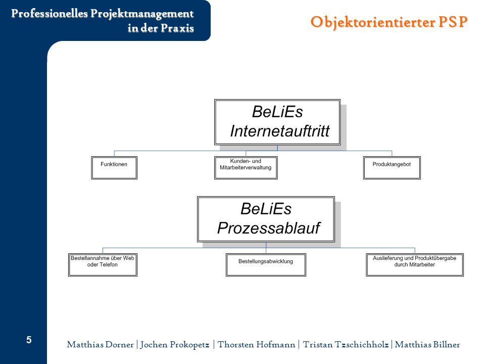 Matthias Dorner | Jochen Prokopetz | Thorsten Hofmann | Tristan Tzschichholz | Matthias Billner Professionelles Projektmanagement in der Praxis 6 Tätigkeitsorientierter PSP