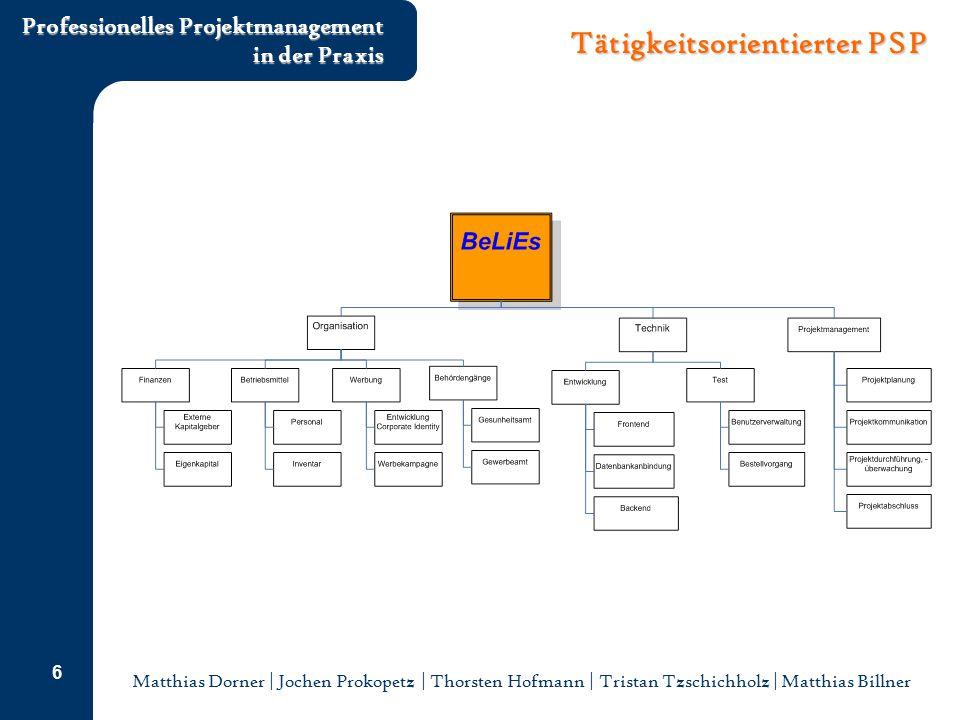 Matthias Dorner | Jochen Prokopetz | Thorsten Hofmann | Tristan Tzschichholz | Matthias Billner Professionelles Projektmanagement in der Praxis 6 Täti