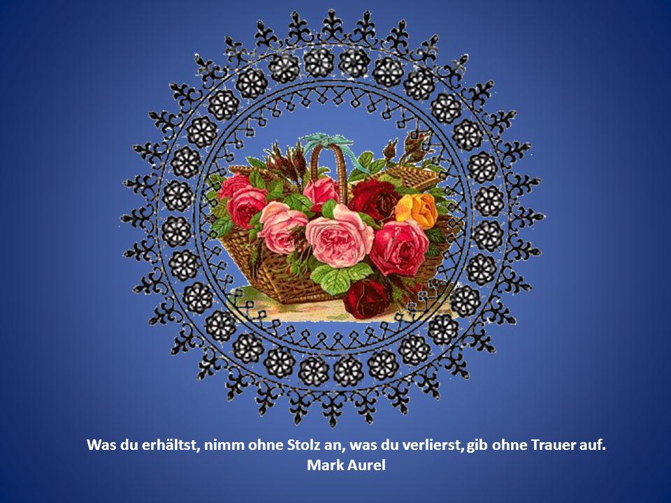Vergiss nicht–man benötigt nur wenig, um ein glückliches Leben zu führen. Mark Aurel