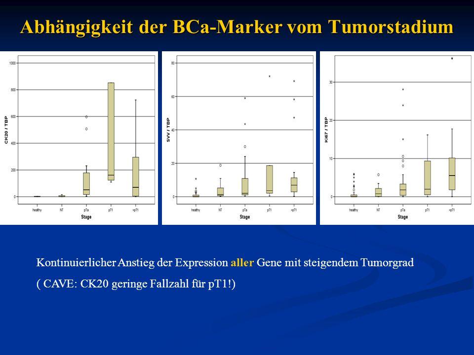 Abhängigkeit der BCa-Marker vom Tumorstadium Kontinuierlicher Anstieg der Expression aller Gene mit steigendem Tumorgrad ( CAVE: CK20 geringe Fallzahl für pT1!)