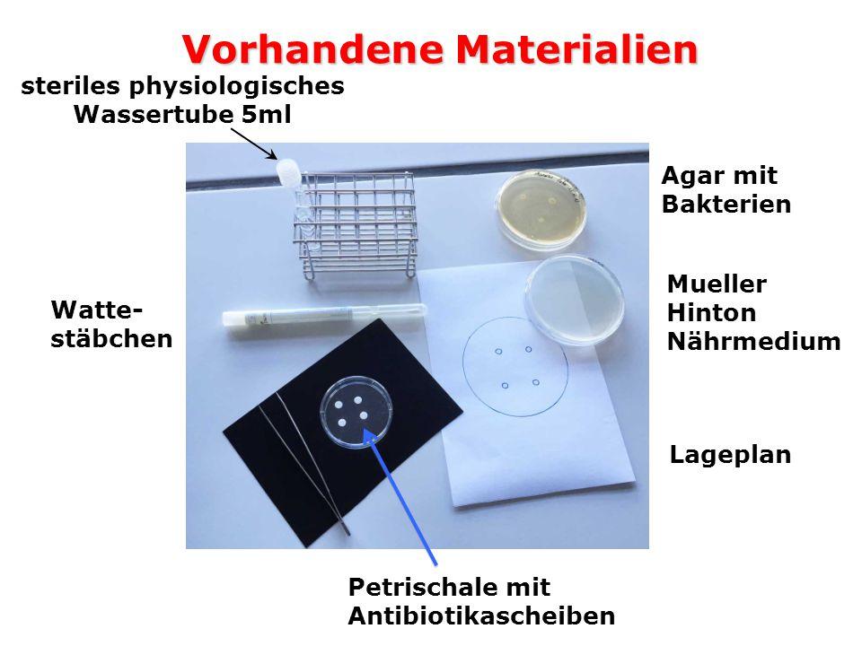 Vorhandene Materialien Agar mit Bakterien Petrischale mit Antibiotikascheiben Mueller Hinton Nährmedium Lageplan steriles physiologisches Wassertube 5