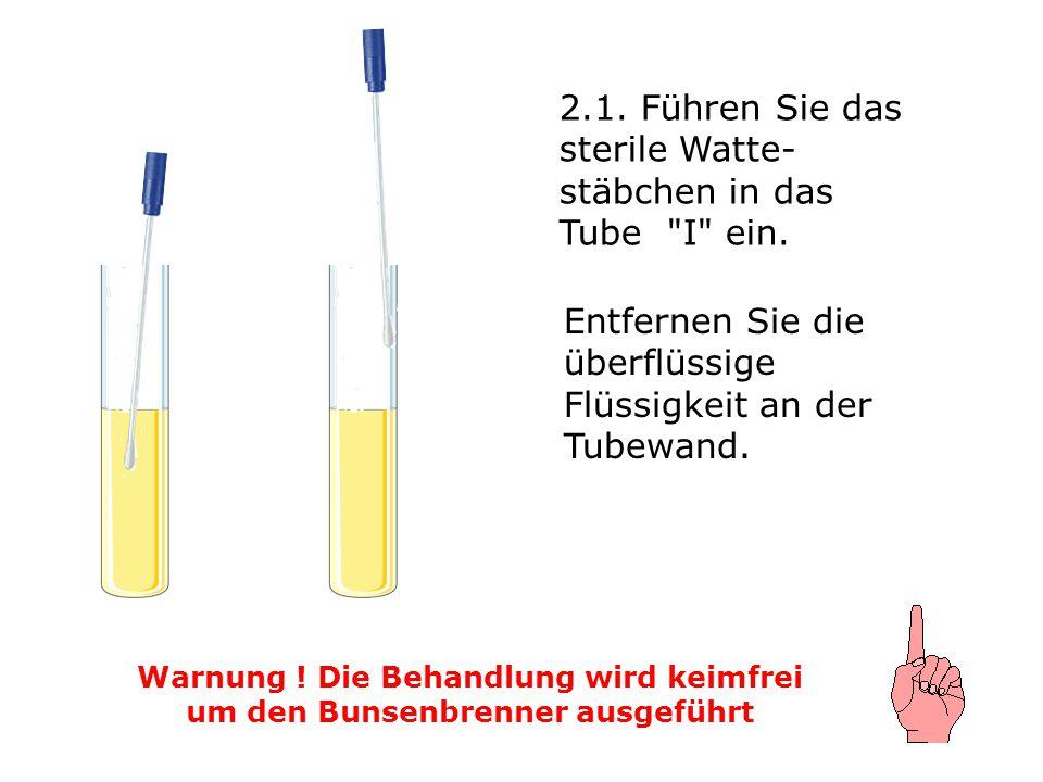 2.1. Führen Sie das sterile Watte- stäbchen in das Tube