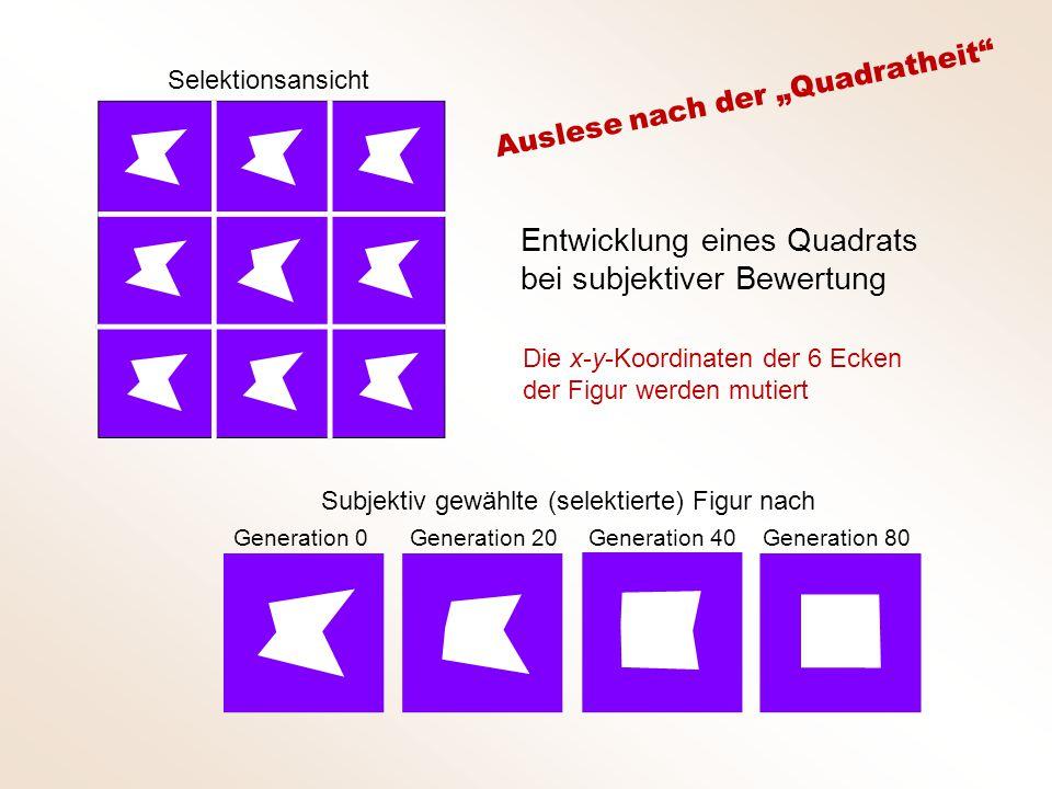 """Selektionsansicht Subjektiv gewählte (selektierte) Figur nach Generation 0 Generation 20 Generation 40Generation 80 Entwicklung eines Quadrats bei subjektiver Bewertung Die x-y-Koordinaten der 6 Ecken der Figur werden mutiert Auslese nach der """"Quadratheit"""