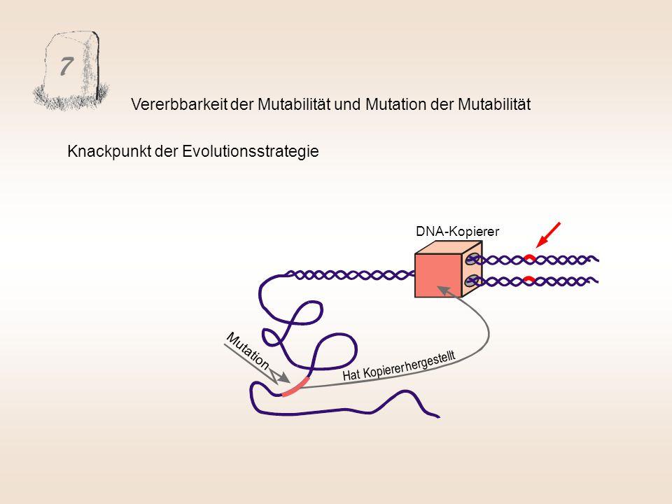 7 Vererbbarkeit der Mutabilität und Mutation der Mutabilität Mutation DNA-Kopierer Hat Kopierer hergestellt Knackpunkt der Evolutionsstrategie