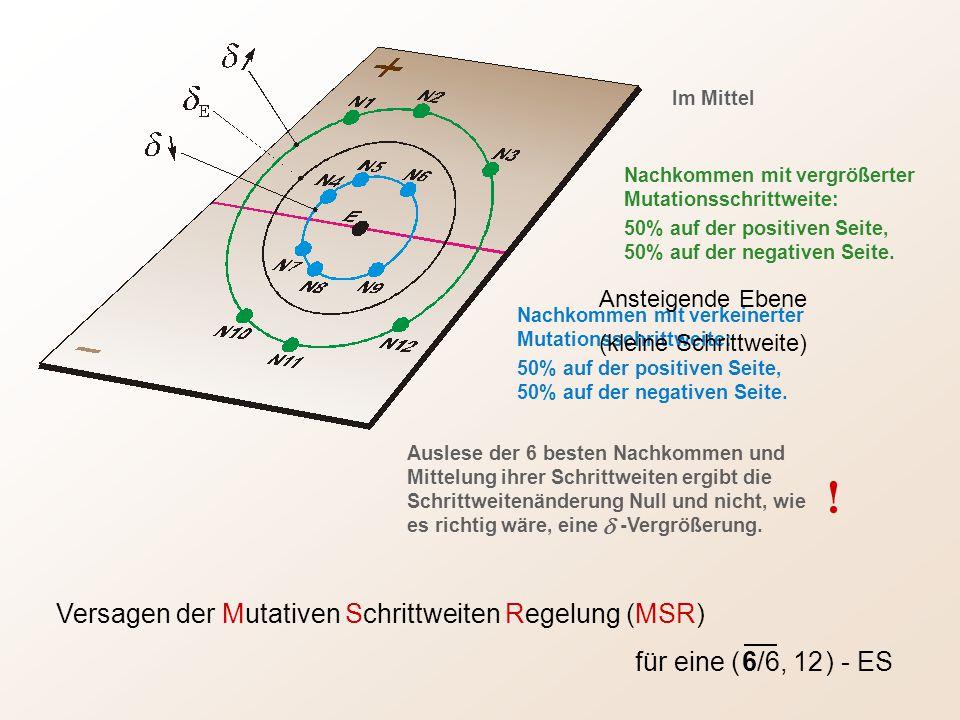 Versagen der Mutativen Schrittweiten Regelung (MSR) für eine ( 6/6, 12 ) - ES Nachkommen mit vergrößerter Mutationsschrittweite: 50% auf der positiven Seite, 50% auf der negativen Seite.