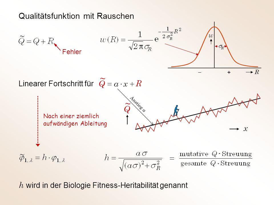 Qualitätsfunktion mit Rauschen Fehler + w R Linearer Fortschritt für Nach einer ziemlich aufwändigen Ableitung h wird in der Biologie Fitness-Heritabilität genannt R  xaQ ~ Q ~ x Anstieg a