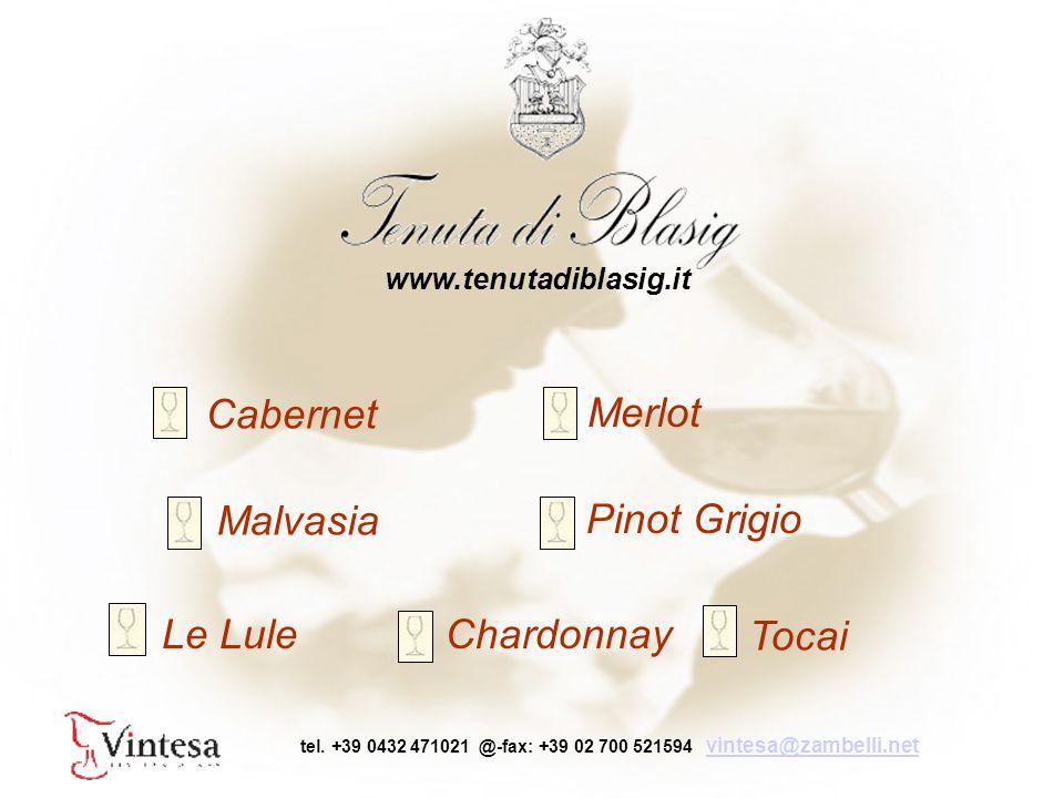 Cabernet Merlot Pinot Grigio Chardonnay Malvasia Tocai Le Lule www.tenutadiblasig.it tel.