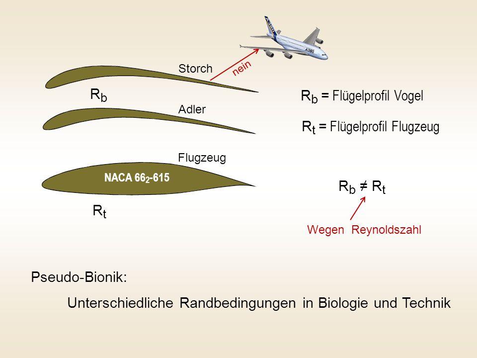 R b = Flügelprofil Vogel R t = Flügelprofil Flugzeug Pseudo-Bionik: Unterschiedliche Randbedingungen in Biologie und Technik RbRb RtRt R b ≠ R t NACA
