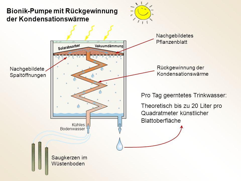 Pro Tag geerntetes Trinkwasser: Theoretisch bis zu 20 Liter pro Quadratmeter künstlicher Blattoberfläche Rückgewinnung der Kondensationswärme Nachgebi