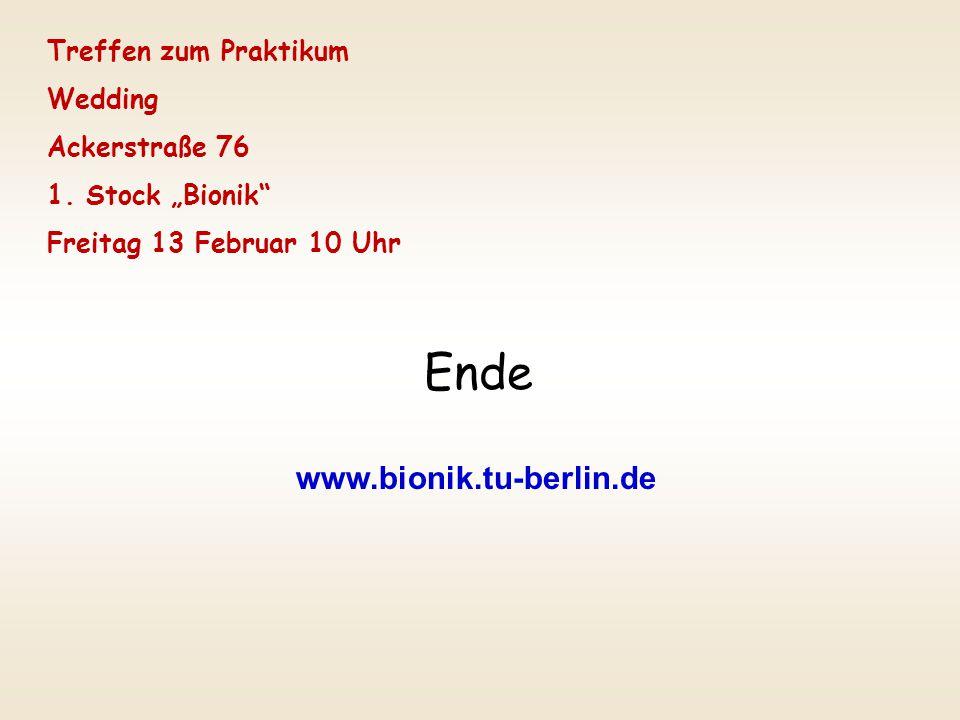 """Ende www.bionik.tu-berlin.de Treffen zum Praktikum Wedding Ackerstraße 76 1. Stock """"Bionik"""" Freitag 13 Februar 10 Uhr"""