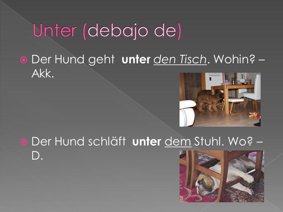 Der Hund geht unter den Tisch. Wohin? – Akk.  Der Hund schläft unter dem Stuhl. Wo? – D.