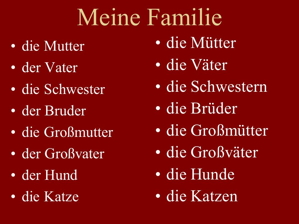 Meine Familie die Mutter der Vater die Schwester der Bruder die Großmutter der Großvater der Hund die Katze die Mütter die Väter die Schwestern die Br