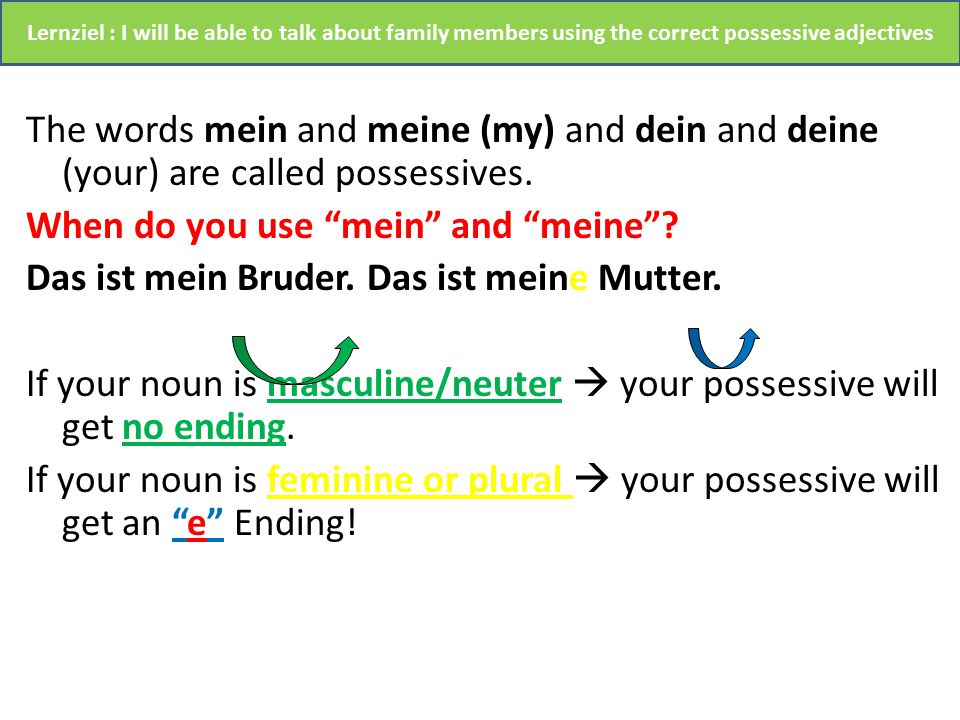 The words mein and meine (my) and dein and deine (your) are called possessives.