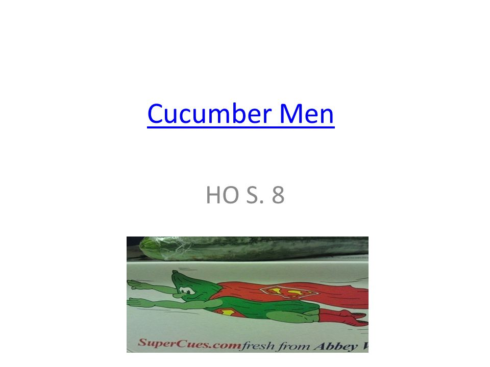 Cucumber Men HO S. 8