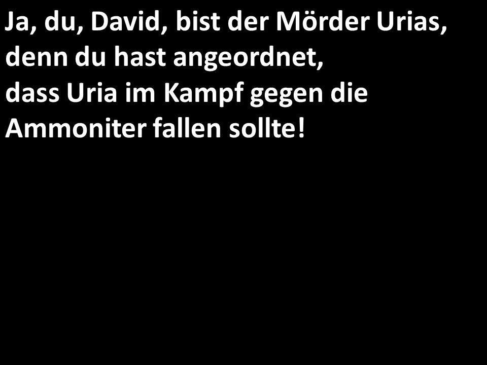 Ja, du, David, bist der Mörder Urias, denn du hast angeordnet, dass Uria im Kampf gegen die Ammoniter fallen sollte!