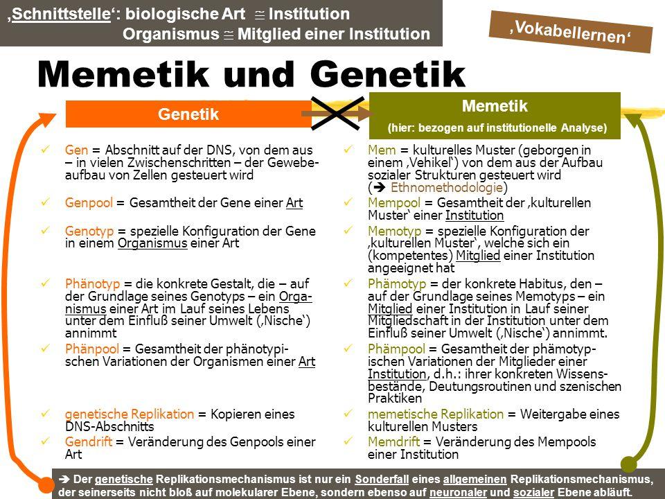 TU Dresden – Institut für Politikwissenschaft – Prof. Dr. Werner J. Patzelt Memetik und Genetik Gen = Abschnitt auf der DNS, von dem aus – in vielen Z