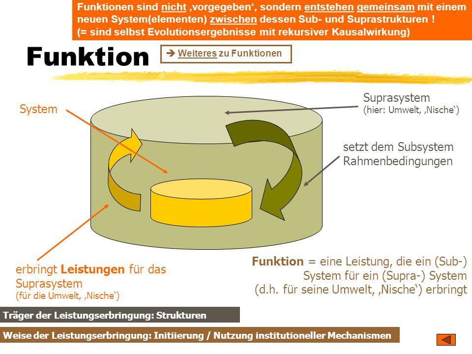 TU Dresden – Institut für Politikwissenschaft – Prof. Dr. Werner J. Patzelt Funktion System Suprasystem (hier: Umwelt, 'Nische') setzt dem Subsystem R