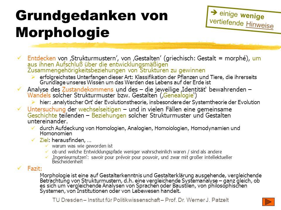 TU Dresden – Institut für Politikwissenschaft – Prof. Dr. Werner J. Patzelt Grundgedanken von Morphologie Entdecken von 'Strukturmustern', von 'Gestal