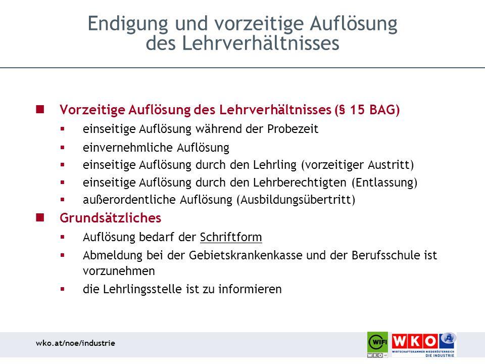 wko.at/noe/industrie Endigung und vorzeitige Auflösung des Lehrverhältnisses Vorzeitige Auflösung des Lehrverhältnisses (§ 15 BAG)  einseitige Auflös