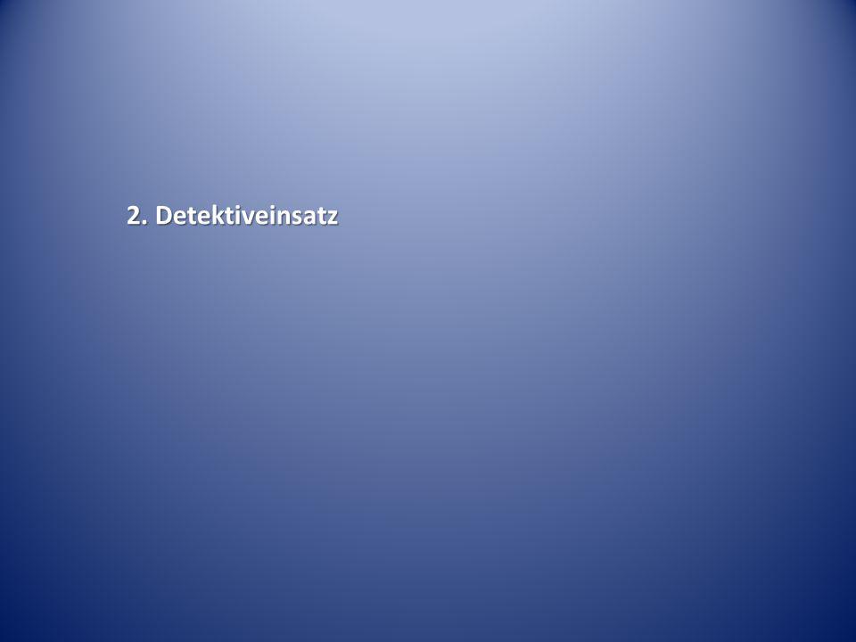 2. Detektiveinsatz