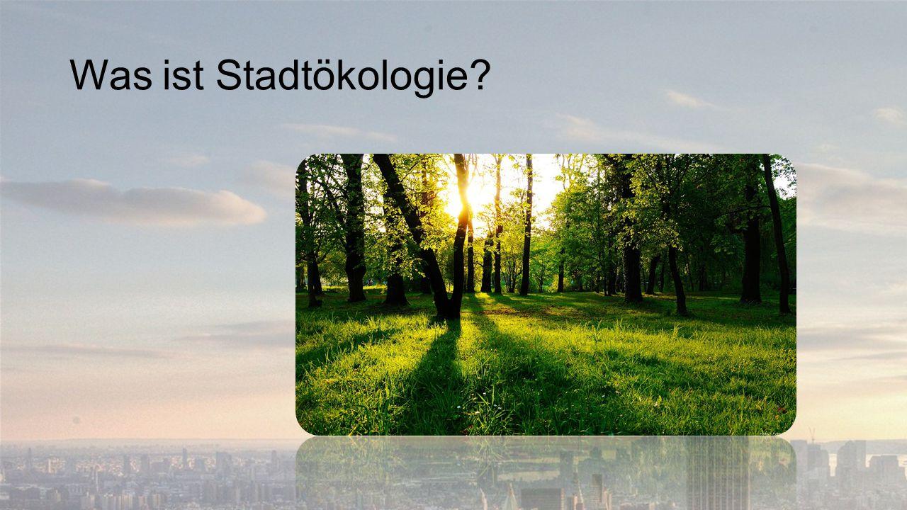Was ist Stadtökologie?