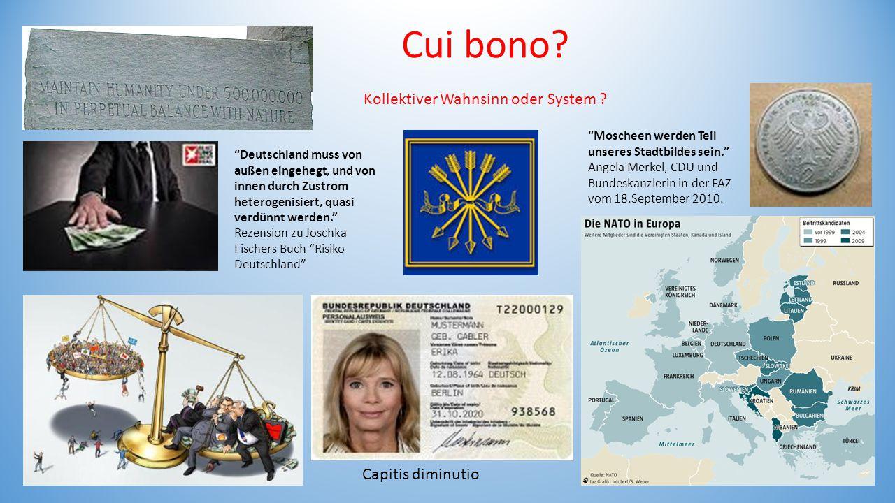 """Cui bono? Kollektiver Wahnsinn oder System ? """"Moscheen werden Teil unseres Stadtbildes sein."""" Angela Merkel, CDU und Bundeskanzlerin in der FAZ vom 18"""