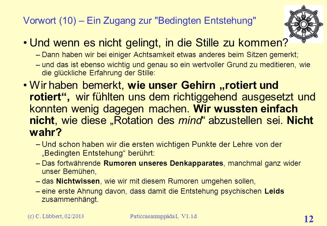 (c) C. Lübbert, 02/2013Paticcasamuppâda I, V1.1d 11 Vorwort (9) – Ein Zugang zur