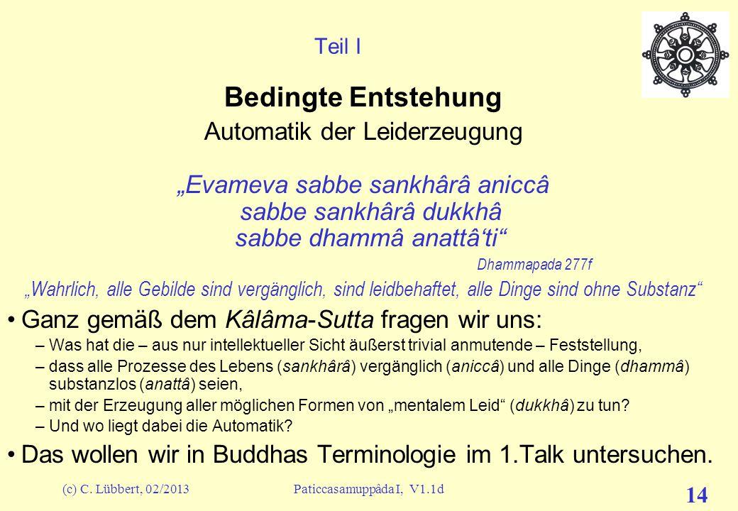 (c) C. Lübbert, 02/2013Paticcasamuppâda I, V1.1d 13 Vorwort (11) – Ein Zugang zur