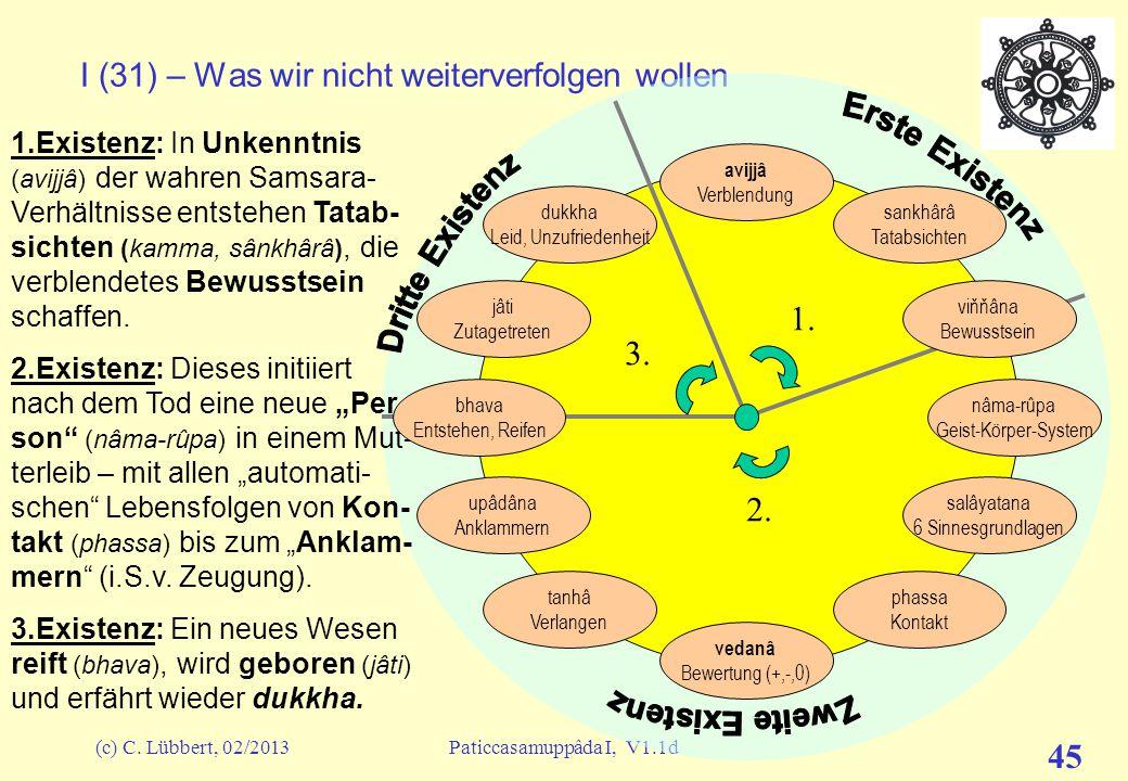 (c) C. Lübbert, 02/2013Paticcasamuppâda I, V1.1d 44 I (30) – Was wir nicht weiterverfolgen wollen &&&&&& Bevor wir im nächsten Talk die Glieder dieses