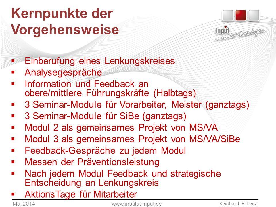 www.institut-input.de Reinhard R. Lenz Mai 2014 Kernpunkte der Vorgehensweise  Einberufung eines Lenkungskreises  Analysegespräche  Information und