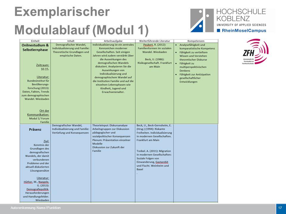 Exemplarischer Modulablauf (Modul 1) Autorenkennung: Name / Funktion17